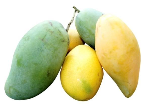409298-Mango-1342466358-300-640x480